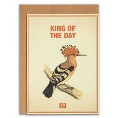 Kort, King of the day