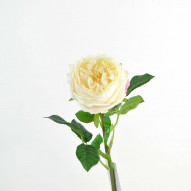 Cabbage rose real touch, 59 cm, cream