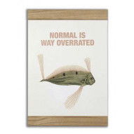 Normal is way overrated, 2-in-one
